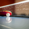 Best Ping Pong Table Reviews
